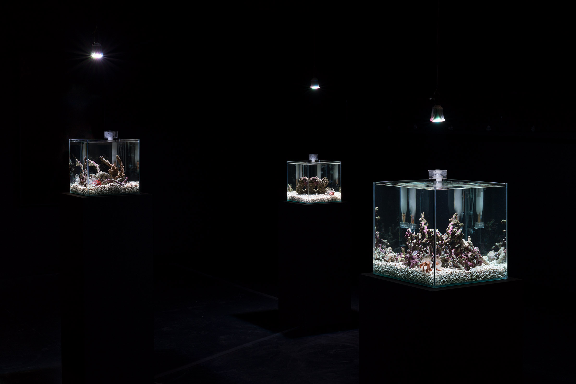 """Installation view of group exhibition """"Asian Art Award 2018 supported by Warehouse TERRADA - Finalist Exhibition"""""""