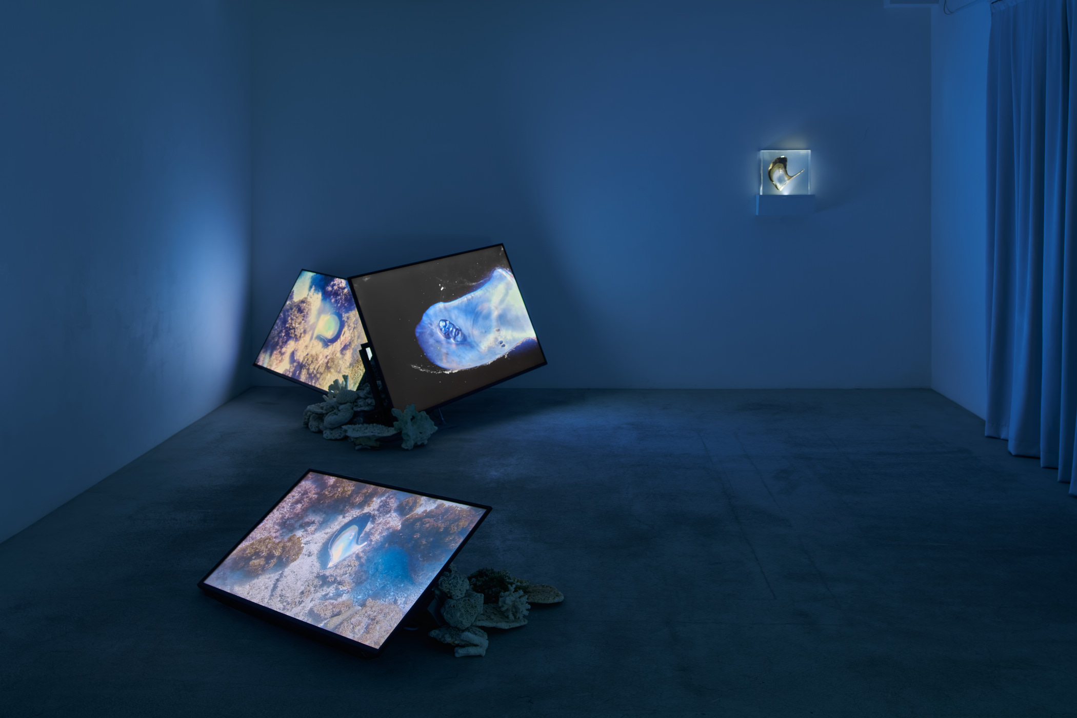 """Installation view of Solo Exhibition """"Memory of Currency"""""""