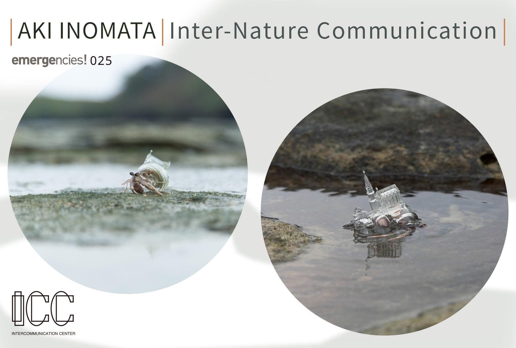 Exhibition: エマージェンシーズ! 025 AKI INOMATA / Inter-Nature Communication