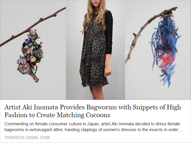 """Article: """"COLOSSAL"""" 記事掲載  Artist Aki Inomata Provides Bagworms with Snippets of High Fashion to Create Matching Cocoons"""