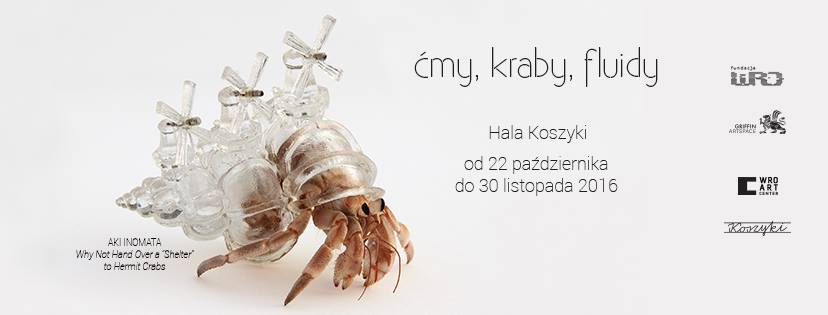 """Exhibition: """"Moths, crabs and vibrations"""" Griffin Art Space, Warsaw"""