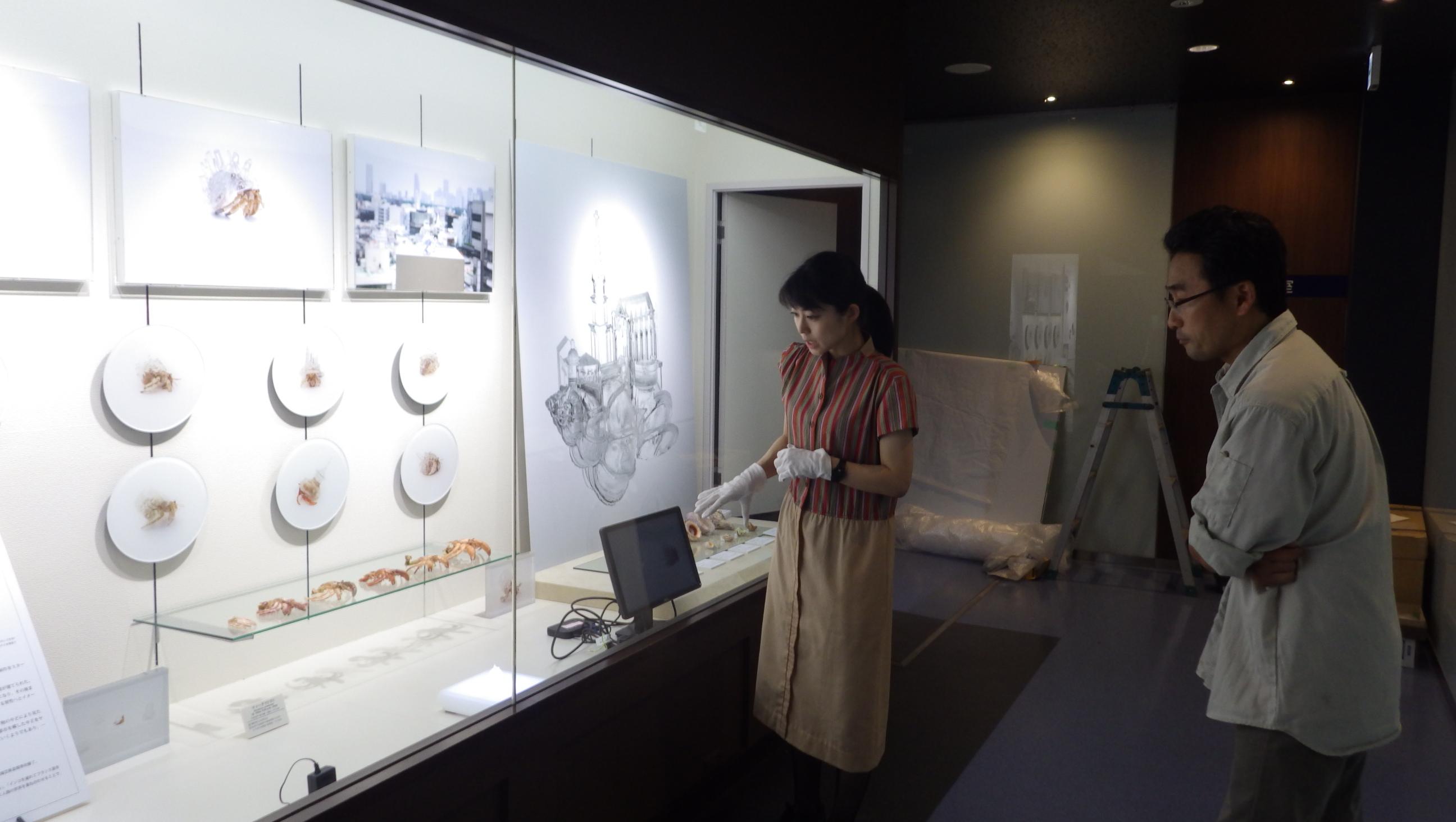 Exhibition: 白浜水族館 企画展「ヤドカリと貝殻 -生態と芸術-」