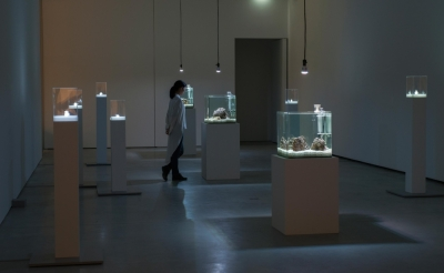 """Exhibition: """"Aki Inomata, Why Not Hand Over a """"Shelter"""" to Hermit Crabs?"""" at Mesee d'arts de Nantes"""